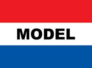 3' x 5' MODEL nylon flag        .