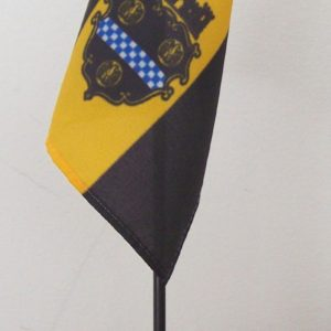 Pittsburgh Mini-Flag with Stand