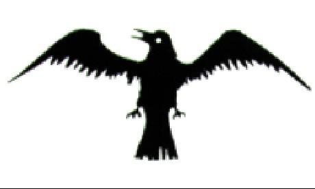 3' x 5'  Viking Raven nylon flag,