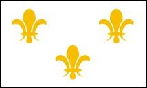 3' x 5' Fleur-de-Lis (white-3) nylon flag
