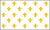3' x 5' Fleur-de-Lis (23) nylon flag