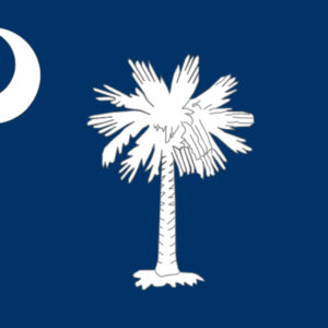 State flag of South Carolina